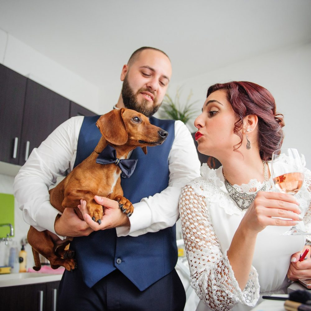 сватбен фотограф, сватба, младоженци