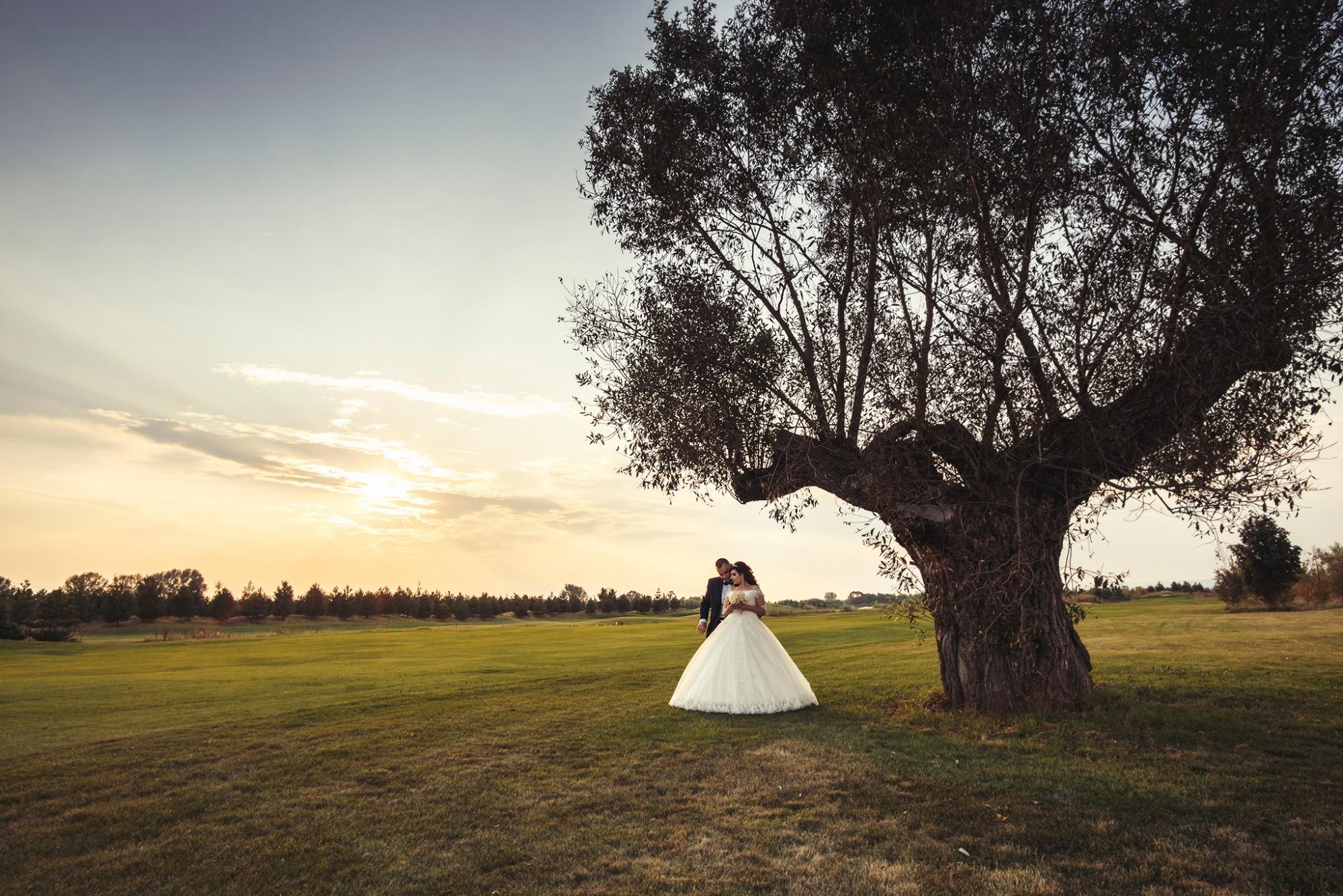Сватбен фотограф, сватбена фотография